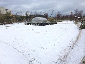 雪景色②.jpg